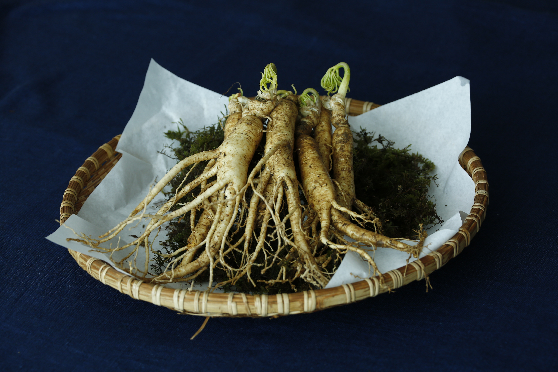 Adaptogene Pflanzenstoffe